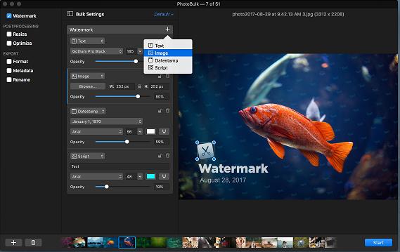 watermark1